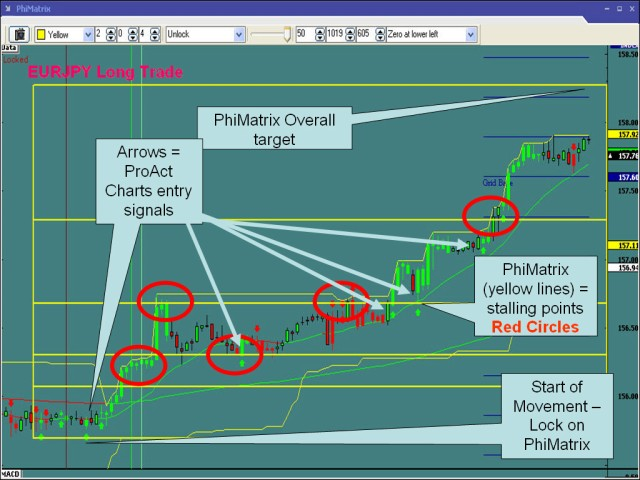 Dynamic Fibonacci Grid Forex Trading Software Quick Tutorial