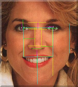 The Human Face And The Golden Ratio The Golden Ratio Phi 1 618