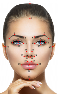 Meisner-Beauty-Guide-Golden-Ratio-Facial-Beauty-Analysis-Markers