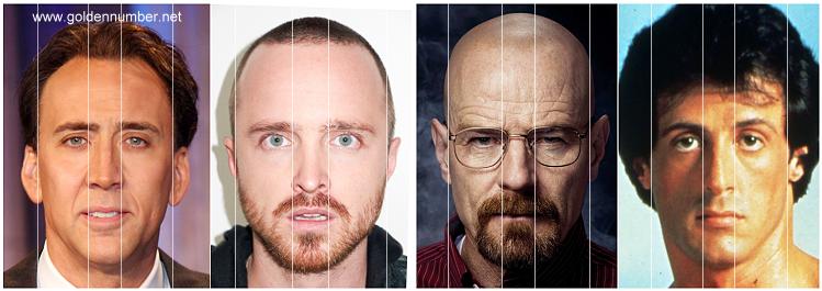 celebrity faces vertical golden ratio facial attractiveness