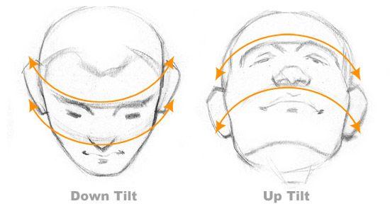 head-tilt