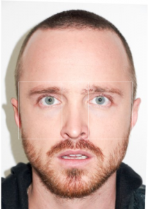 vertical golden ratio aaron paul