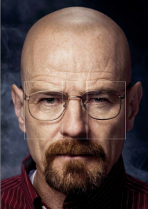 vertical golden ratio bryan cranston